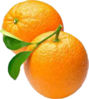 orange-oil-200x224